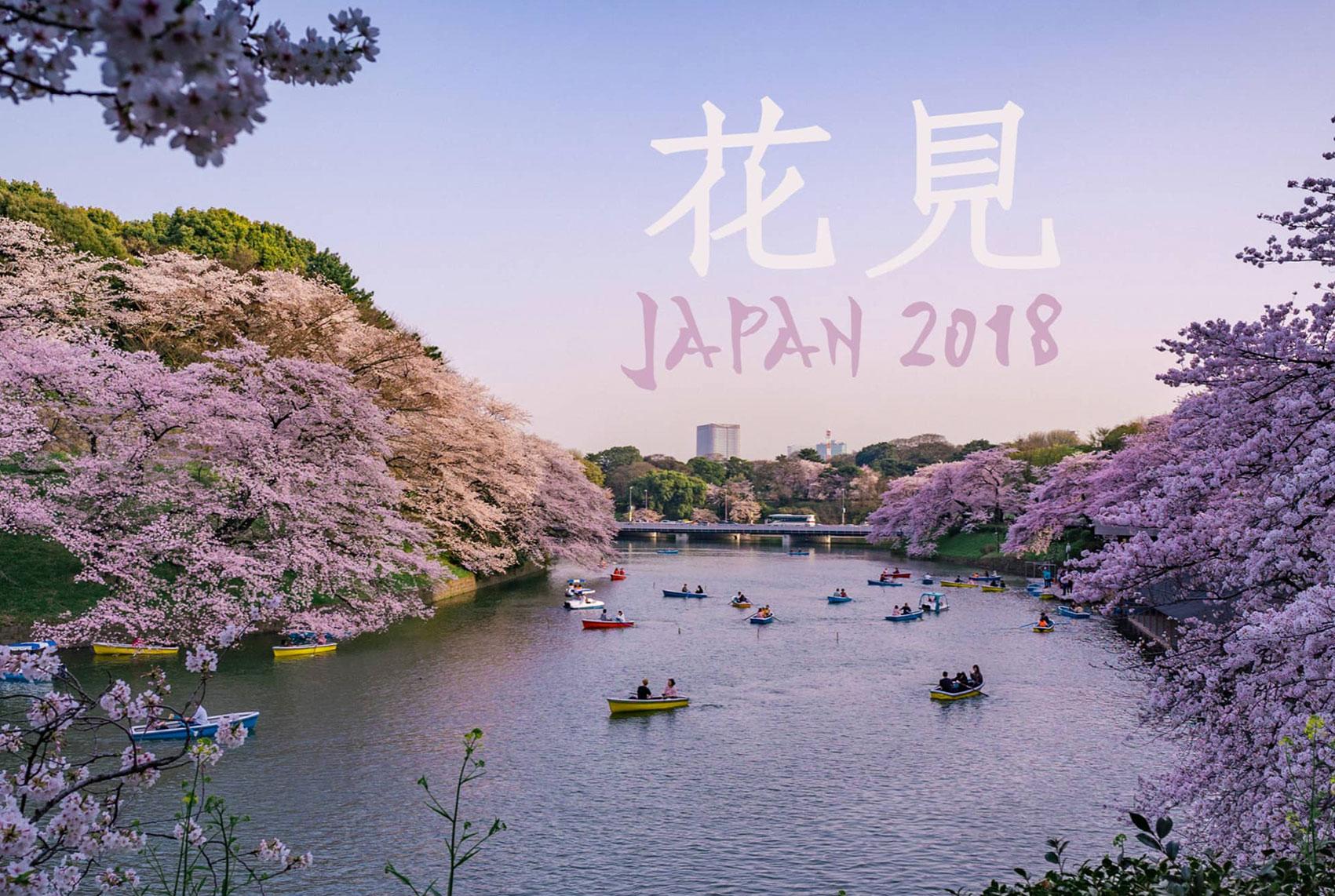 花見 – Japan 2018